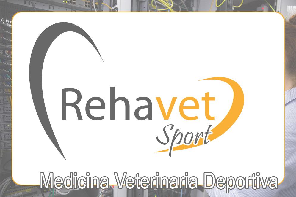 re_terapias_veterinaria